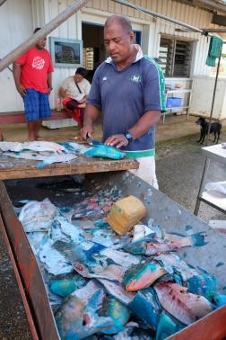Pesce a Tonga